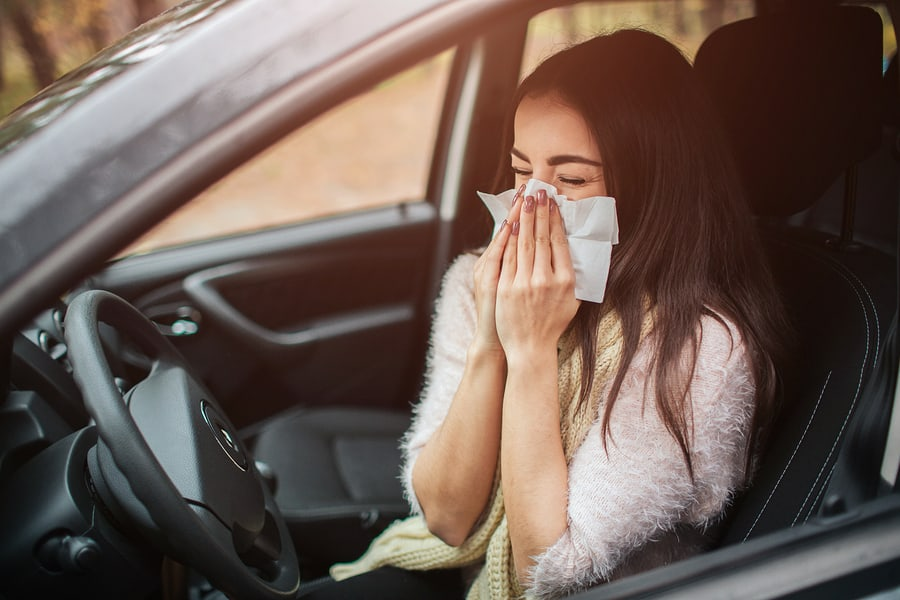 driving with hayfever